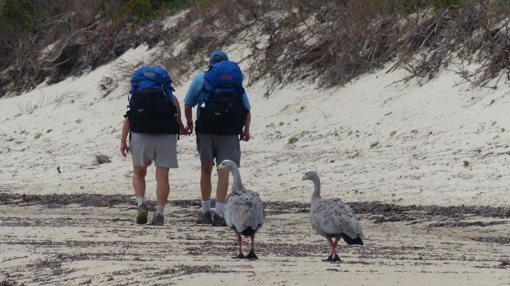 Sandy Wormser OZ & NZ JAN 2014