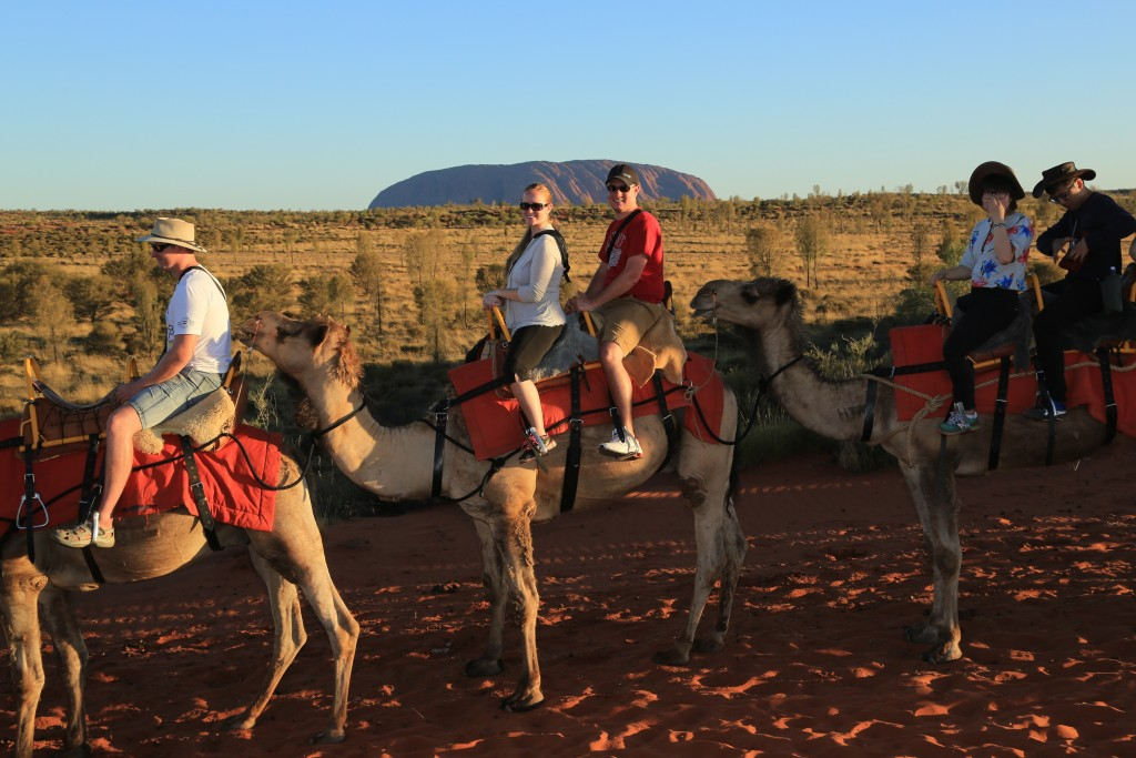 Geiser & Witherell OZ Honeymoon Camel Tour DEC 2014