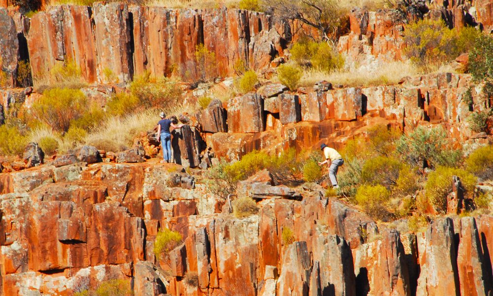 Gawler Ranges Safaris Visitors