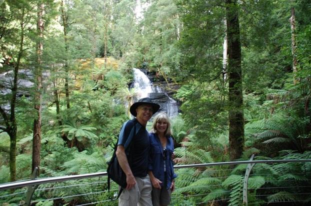 Ufer Rainforest